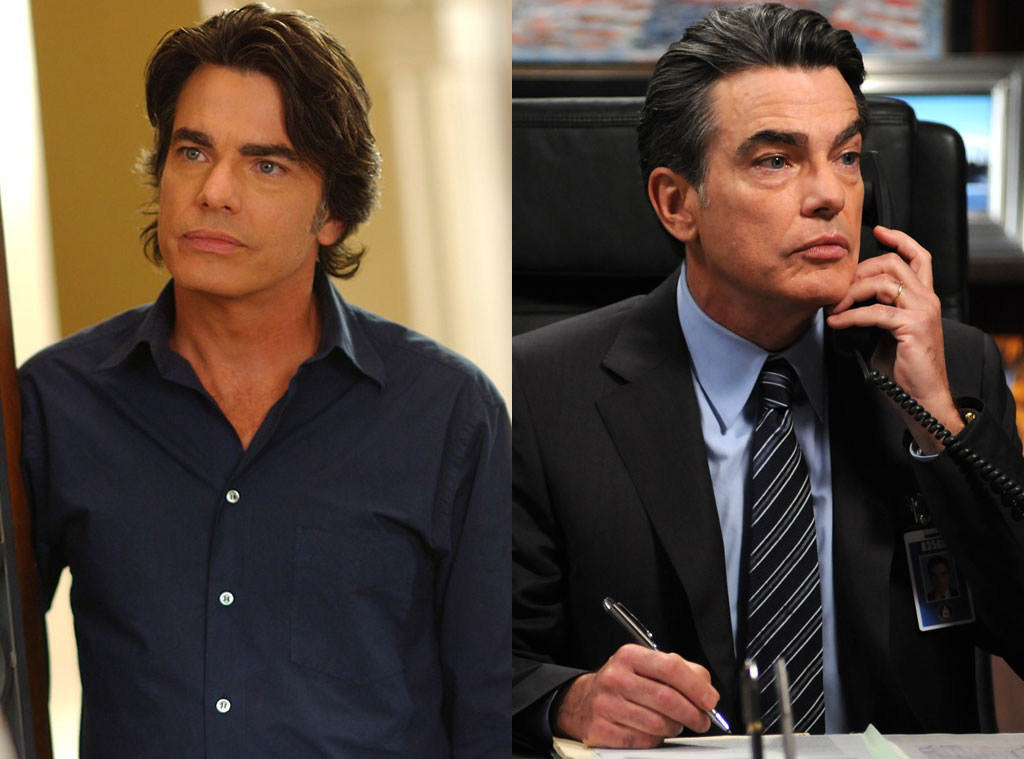 Peter Gallagher, The O.C., Covert Affairs
