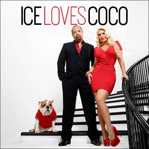Ice Loves Coco Show Brick 10/5