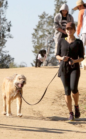 Eva Mendes, Ryan Gosling Dog, George