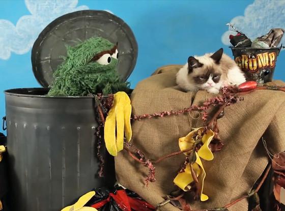 Oscar The Grouch, Grumpy Cat