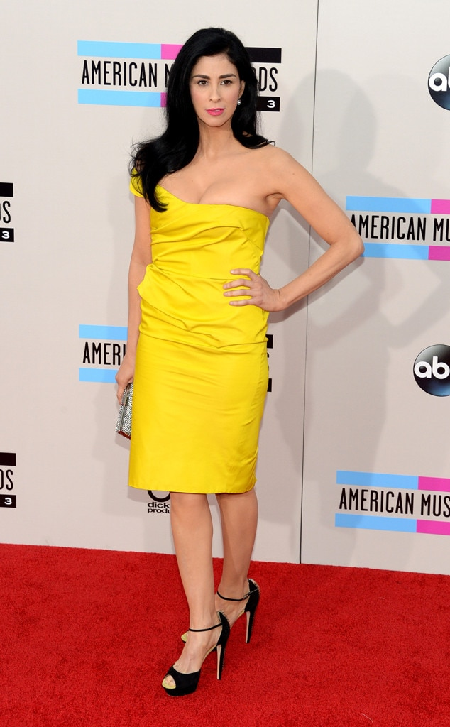 Sarah Silverman, 2013 American Music Awards