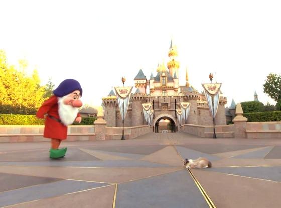 Grumpy Cat, Disneyland