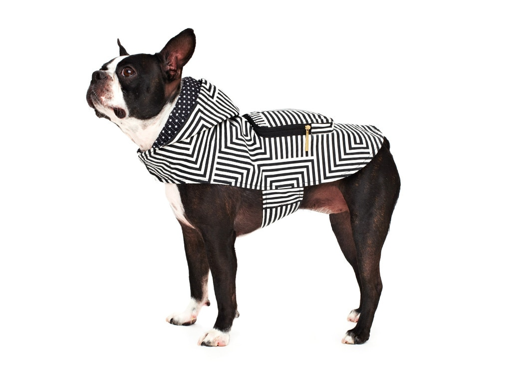 Kate Spade Saturday Pooch Parka, Holiday Pet Gift Guide