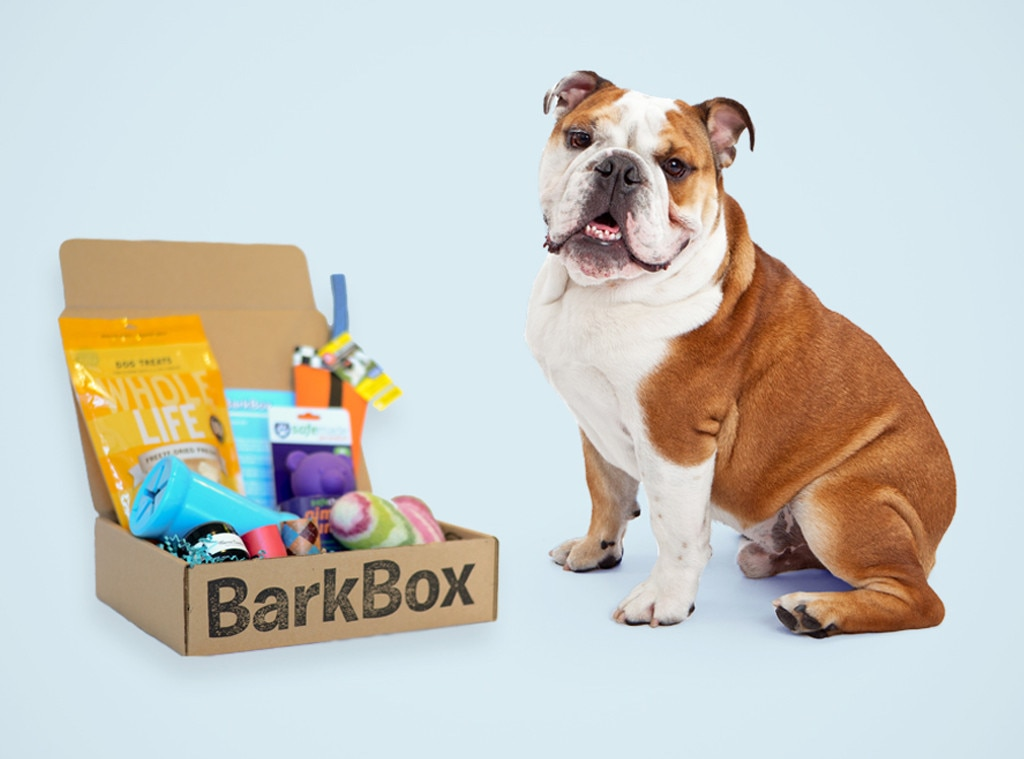 BarkBox Subscription, Holiday Pet Gift Guide