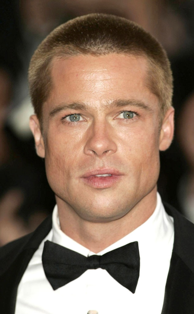 Brad Pitt, 2004