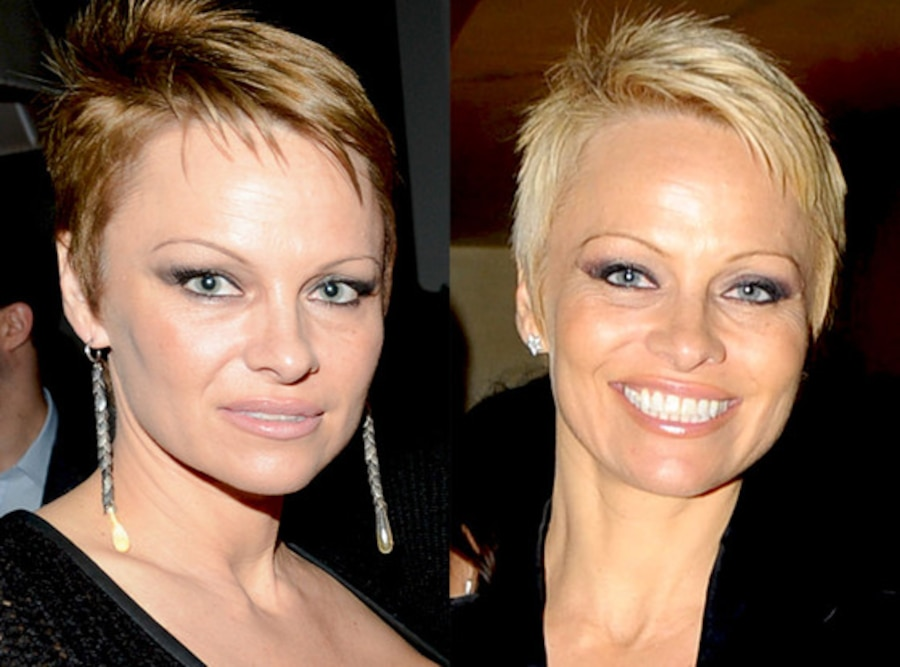 Pamela Anderson, Blonde to Brunette