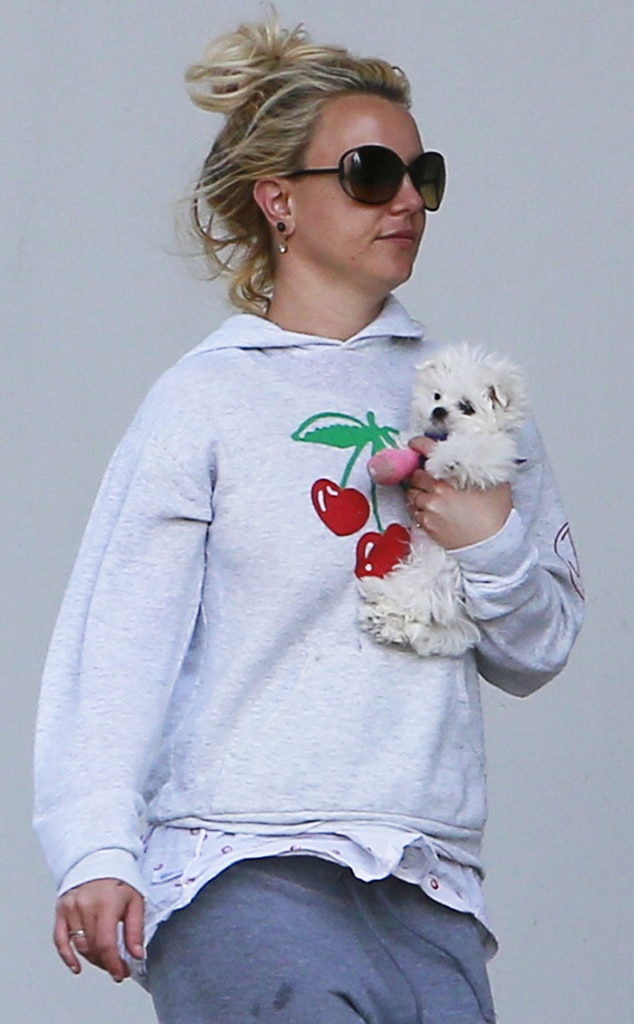 Britney Spears, Puppy