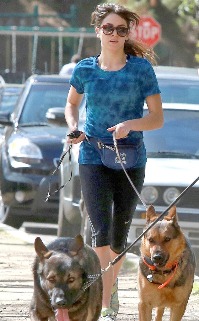 Nikki Reed, Dogs