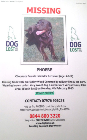 Emma Bunton, Dog Missing Flyer