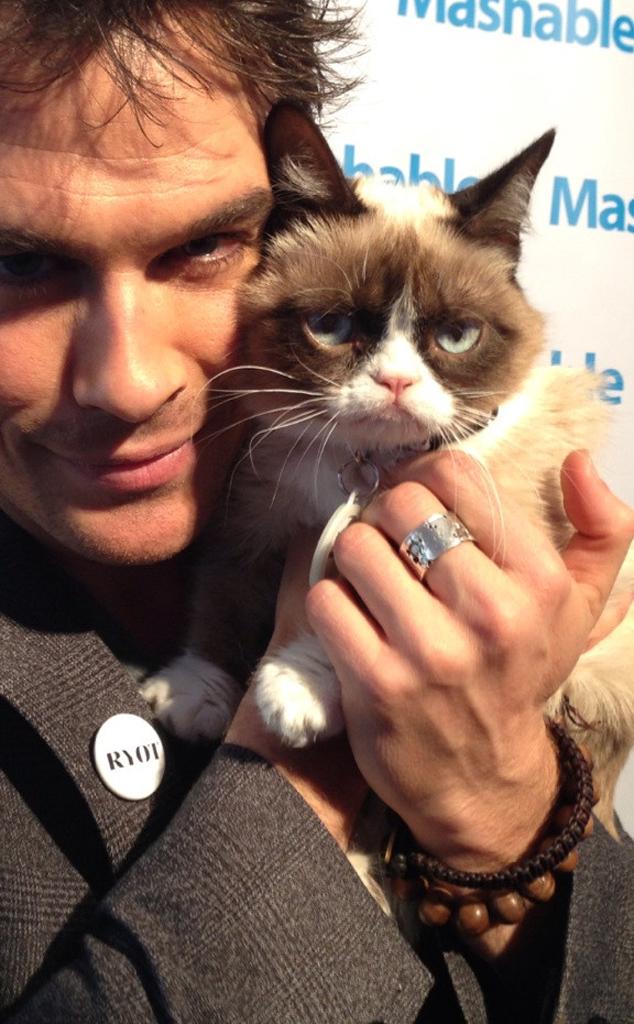 Ian Somerhalder, Grumpy Cat, Twit Pic
