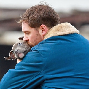 Tom Hardy, Dog