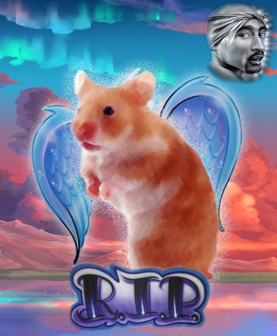 RIP Justin Biebers hamster