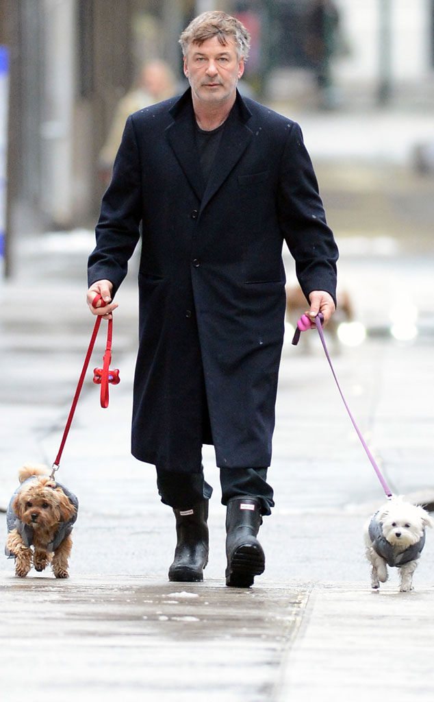 Alec Baldwin From Celebrity Pets Miley Cyrus Puppy