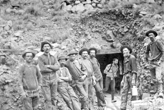 Shia Prospector