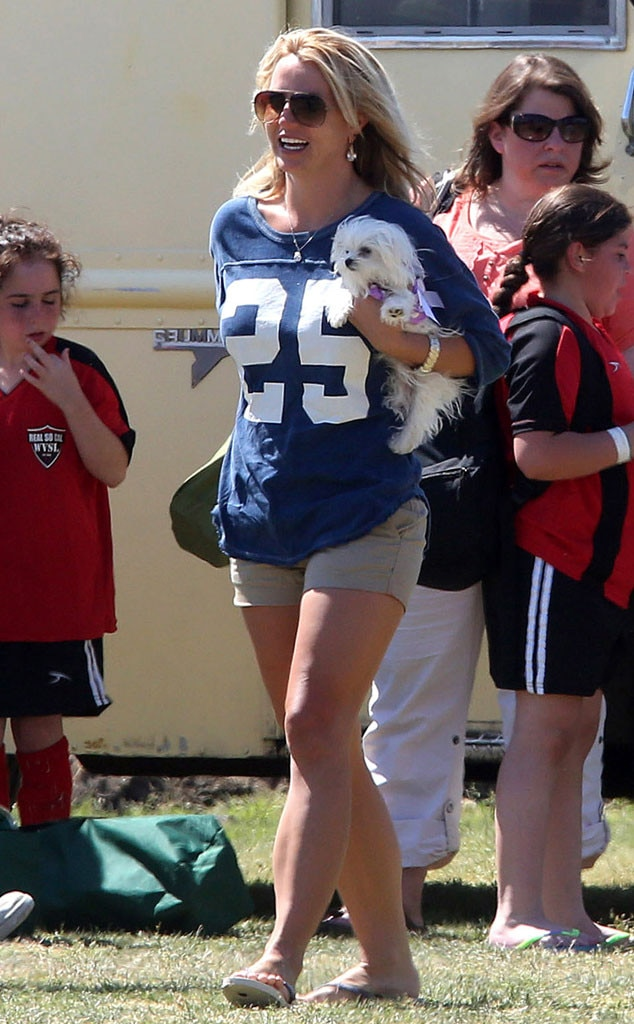 Britney Spears, Dog