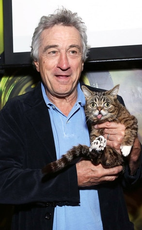 Robert De Niro, Lil Bub Cat