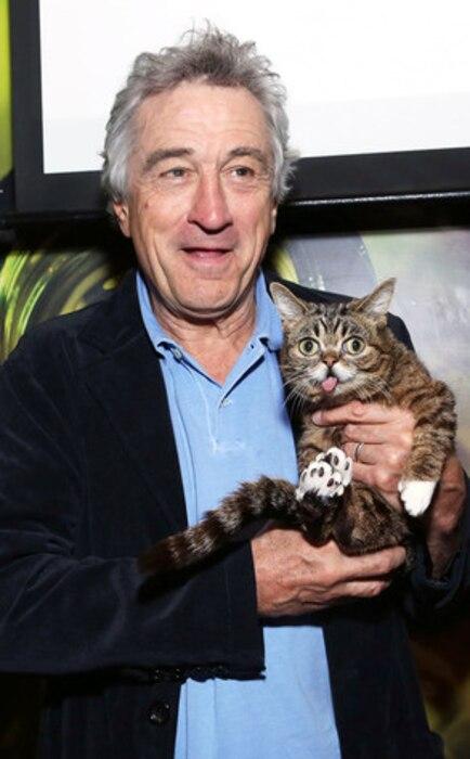 Robert De Niro, Lil Bub Cat