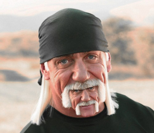 Infinite Hogan