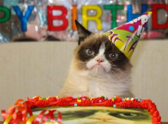 Grumpy Cat, Instagram