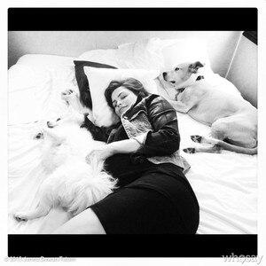 Jenna Dewan Tatum, Whosay