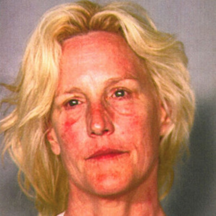 Erin Brockovich-Ellis, Booking Photo, Mugshot