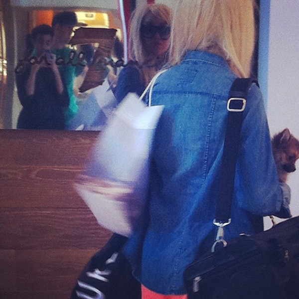 Amanda bynes and puppy spotted shopping in new york e news for Online shopping sites in new york