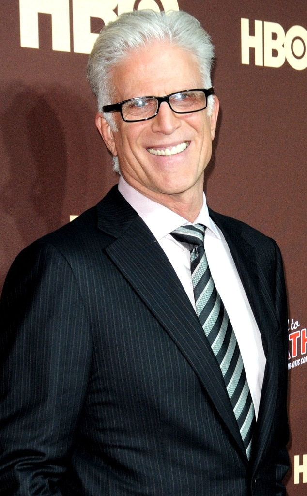 Ted Danson, Silver Foxes