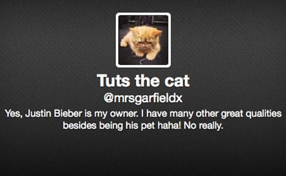 Justin Bieber, Tuts the Cat, Twitter