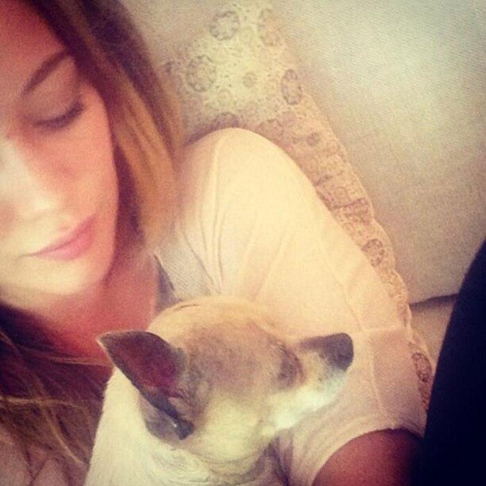 Hilary Duff, Dog, Twit Pic