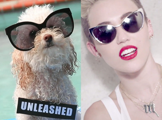 We Can Bark, We Can't Stop, Miley Cyrus