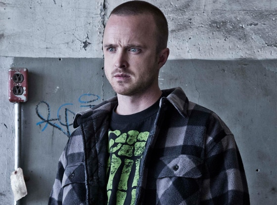 Aaron Paul, Breaking Bad