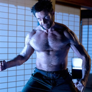 The Wolverine, Gallery