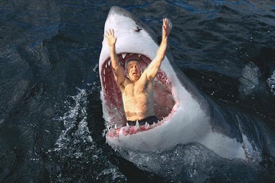 Alec Baldwin Photoshop Shark 1