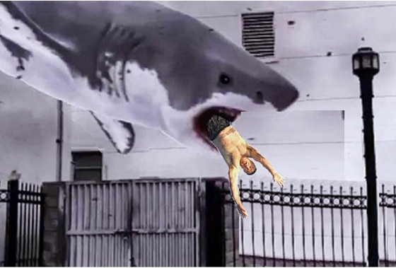 Alec Baldwin Photoshop Shark 4