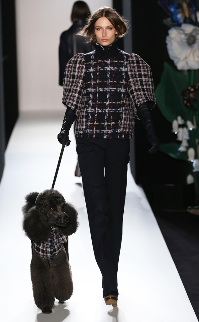Plaid, Mulberry show