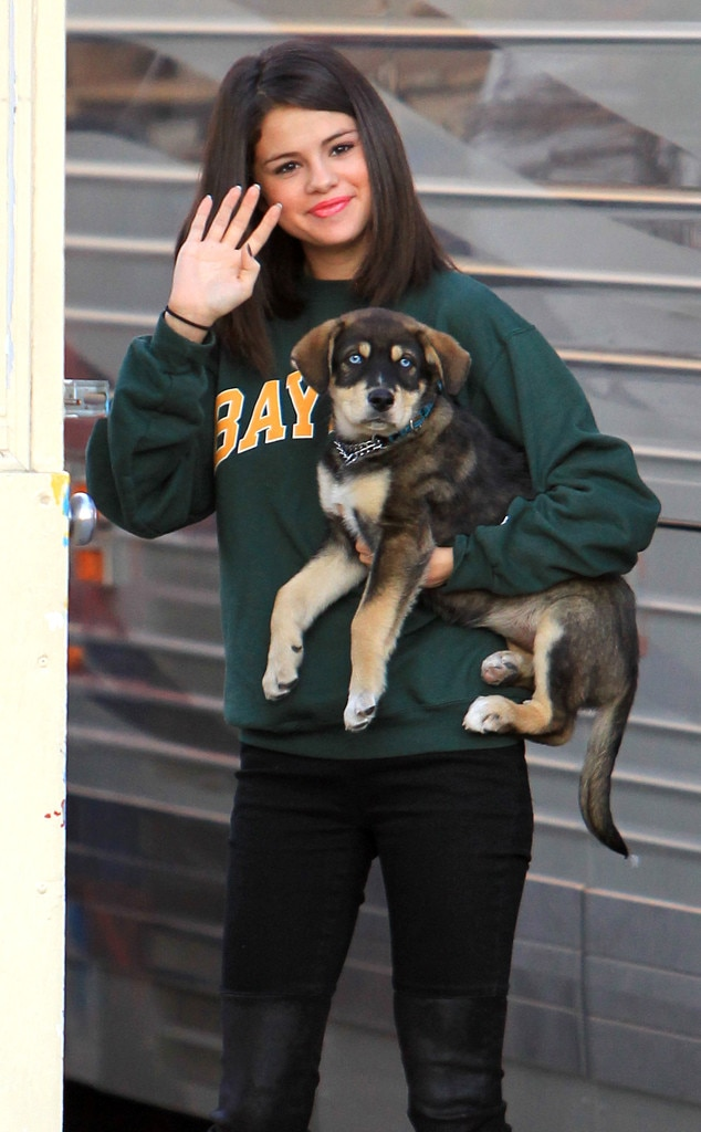 Selena Gomez, Baylor, Adopted Dogs