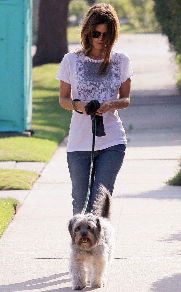 Rachel Bilson, Thurmen Murmen, Adopted Dogs