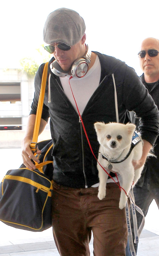 Channing Tatum, Dog