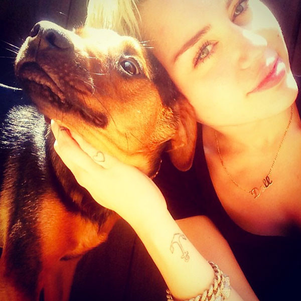 Puppy Love from Miley ... Miley Cyrus Instagram