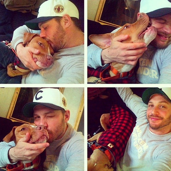 http://akns-images.eonline.com/eol_images/Entire_Site/2013727/rs_600x600-130827174323-600.tom-hardy-dog.ls.82713.jpg