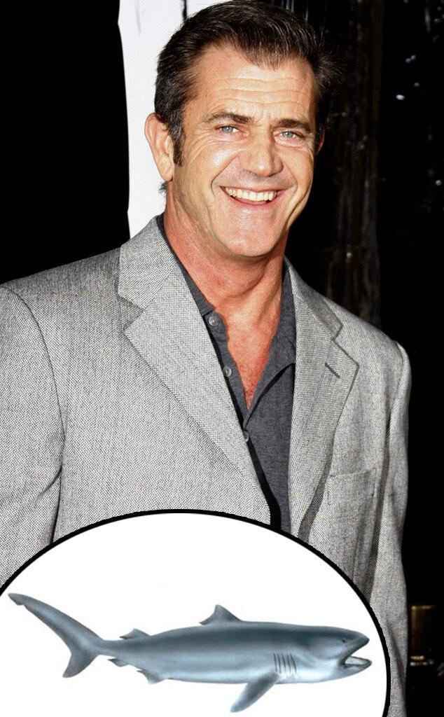 Mel Gibson, Megamouth Shark