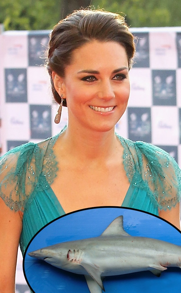 Kate Middleton, Graceful Shark