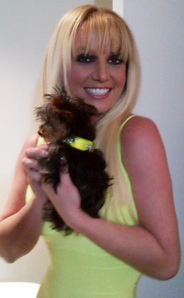 Britney Spears, Hannah Spears