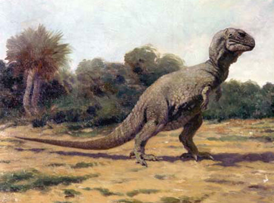 Tyrannosaurus Rex, T. Rex