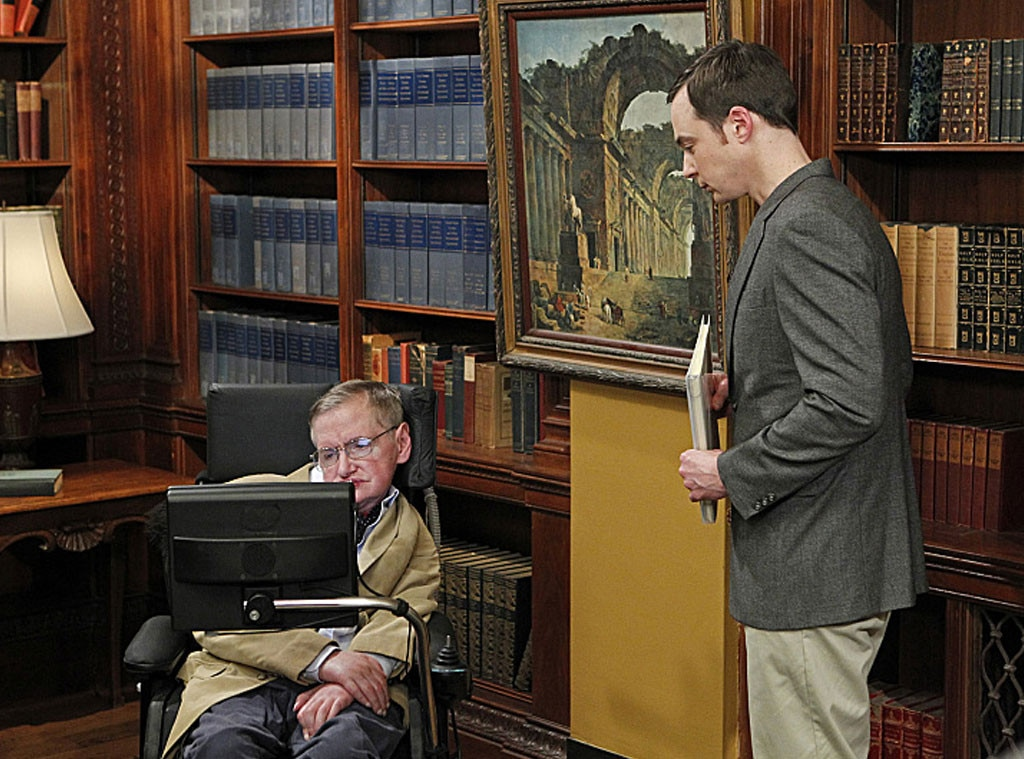 Big Bang Theory Guest Stars, Stephen Hawking