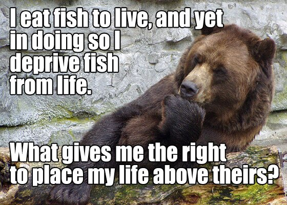Existential Bear 2