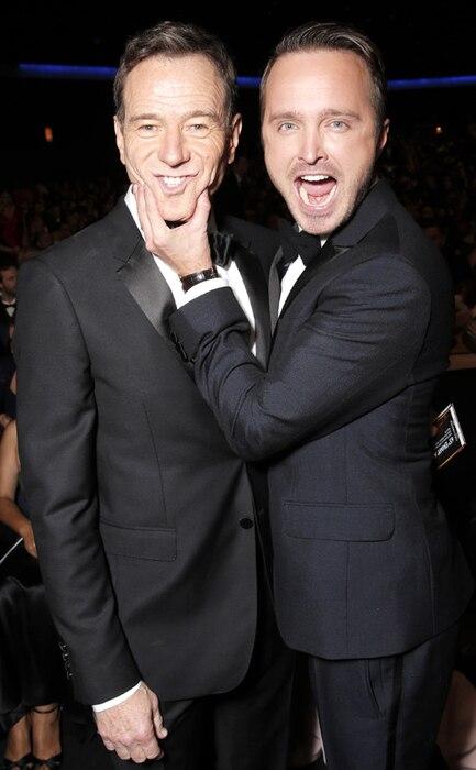 Bryan Cranston, Aaron Paul, Emmy Awards, 2013, Audience
