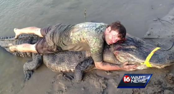 727 Pound Alligator