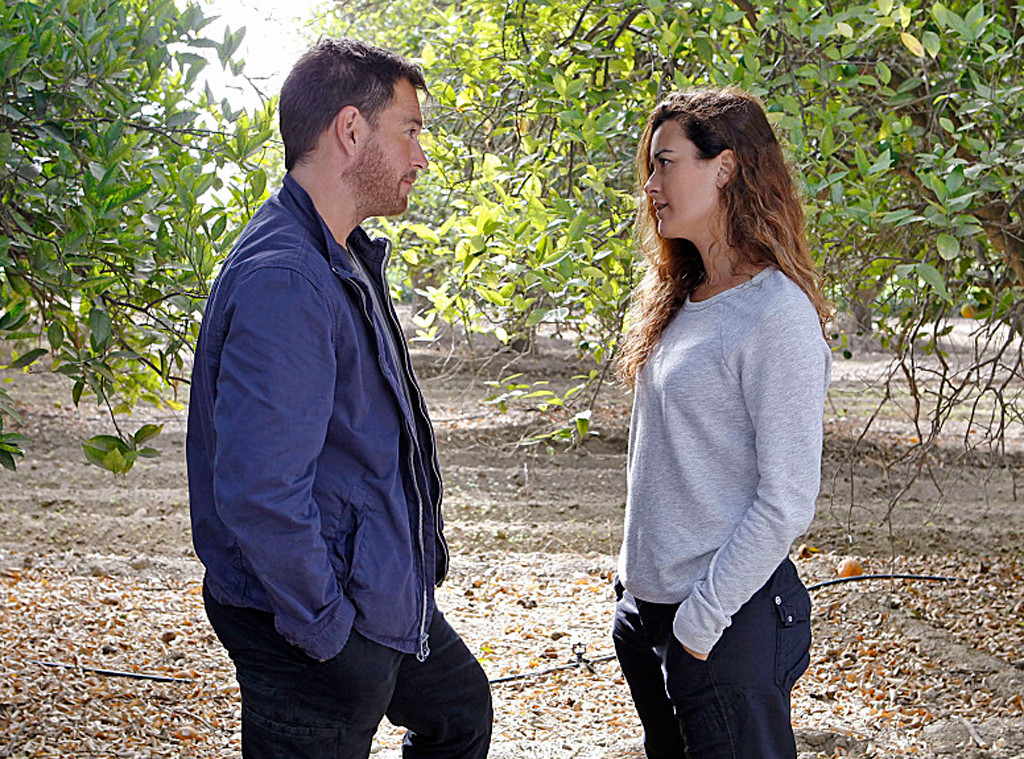 NCIS, Michael Weatherly, Cote de Pablo