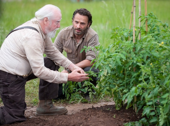 Scott Wilson, Andrew Lincoln, The Walking Dead